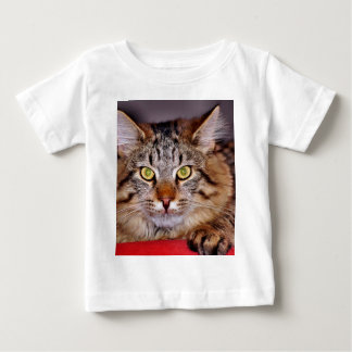 Maine-Coone Cat Baby T-Shirt
