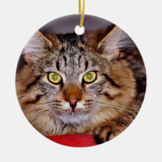 Maine-Coone Cat Ceramic Ornament