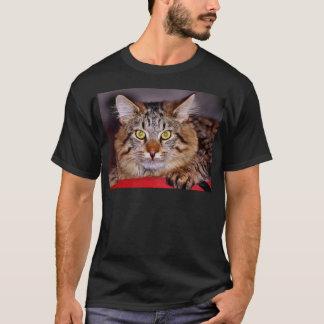 Maine-Coone Cat T-Shirt