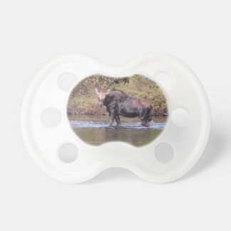 Maine Cow Moose Baby Pacifiers