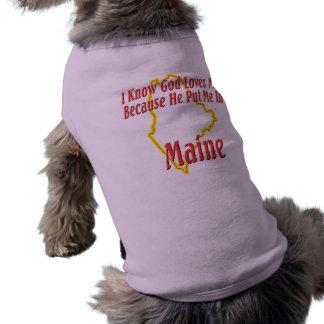 Maine - dios me ama ropa perro