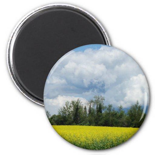 Maine Farmland Fridge Magnet