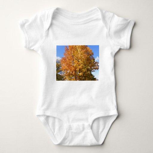 Maine Foliage Tee Shirts