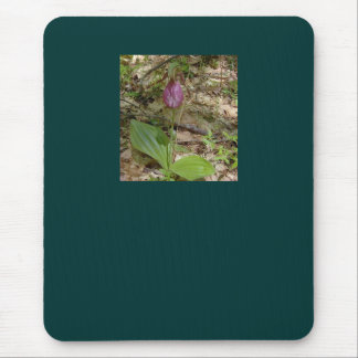 Maine Lady Slipper Orchids in Wells Maine - photo Mouse Pad