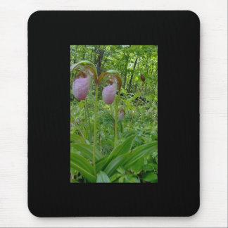 Maine Lady Slippers in Wells Maine - photo by Wend Mouse Pad