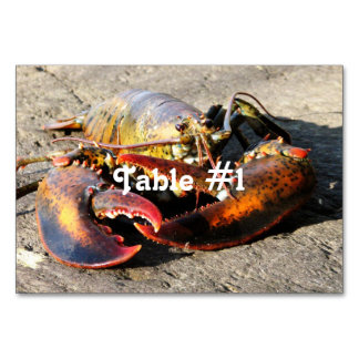 Maine Lobster Card