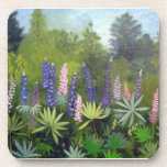 Maine Lupine Flowers Drink Coaster