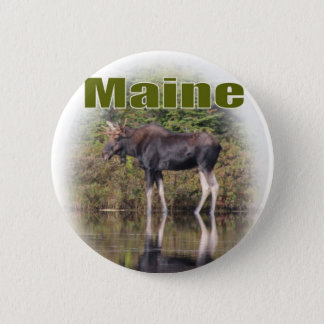 Maine Moose Button