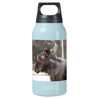Maine Moose Country Waterbottle Insulated Water Bottle