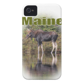 Maine Moose iPhone 4 Cover