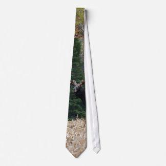 Maine Moose Yearling Tie