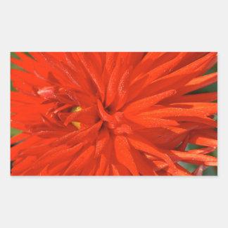 Maine Mum Brilliant Red Flower Rectangular Sticker
