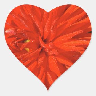 Maine Mum Brilliant Red Flower Heart Sticker