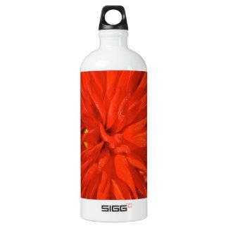 Maine Mum Brilliant Red Flower Water Bottle
