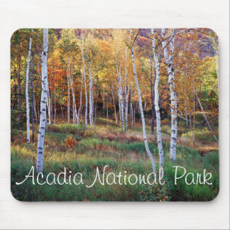 Maine, parque nacional del Acadia, otoño Alfombrillas De Ratones