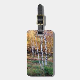 Maine, parque nacional del Acadia, otoño Etiquetas Maleta