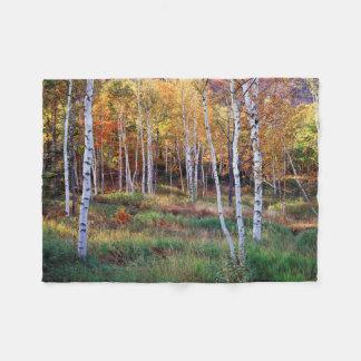 Maine, parque nacional del Acadia, otoño Manta De Forro Polar