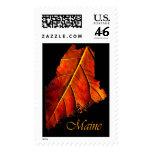 Maine Photo Fall Foliage | Maine Autumn Foliage Stamp