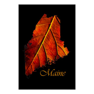 Maine Posters | Maine Fall Foliage Poster