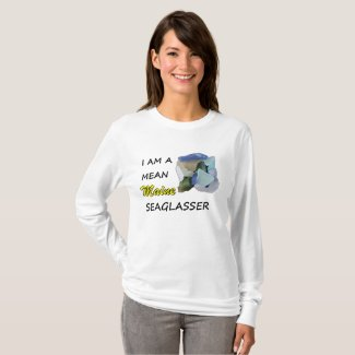 Maine Sea Glass T-Shirt Long Sleeve Tee