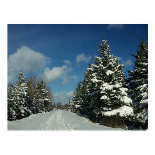 Maine septentrional 8 postales