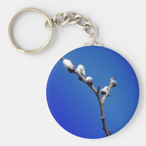 Maine Spring Key Chains
