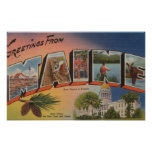 Maine (State Capital/Flower)Large Letter Posters