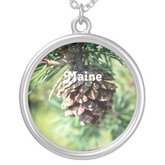 Maine White Pine