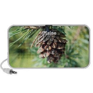 Maine White Pine Speakers