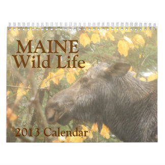 Maine Wild Life 2013 Calendar