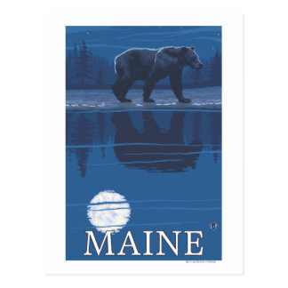 MaineBear in the Moonlight Postcard