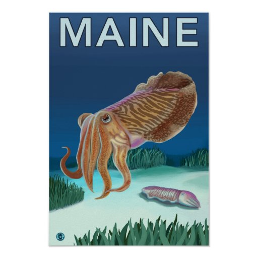 MaineCuttlefish Scene Poster