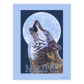 MaineHowling Wolf Postcard