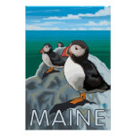 MainePuffins Scene Poster