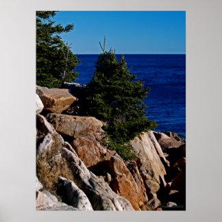 Maine's Rocky Coast Poster