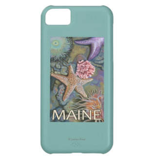 MaineTidepool Scene Cover For iPhone 5C
