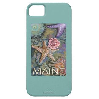 MaineTidepool Scene iPhone 5 Cases