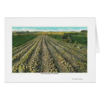 MaineView de una granja de la patata en Maine Tarjeta De Felicitación