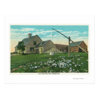 MaineView de una granja vieja de Nueva Inglaterra Tarjetas Postales
