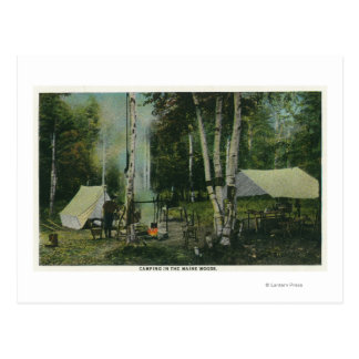 MaineView of a Campground in the Maine Woods Post Card