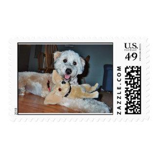 Maisie.jpg Stamps