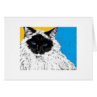 maisie the ragdoll cat card