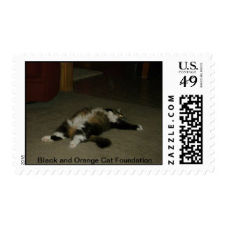 Maisy Mae's tummy Postage Stamps