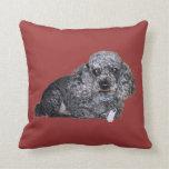 Maitai the Poodle Pillow.
