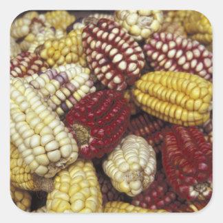 Maíz de Suramérica, Perú, maíz Pegatina Cuadrada