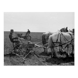 Maíz traído por caballo Planter 1940 Postal