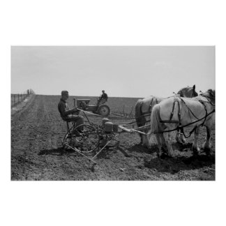 Maíz traído por caballo Planter, 1940 Póster