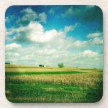 Maíz y nubes posavaso