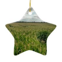 Maize maze ceramic ornament