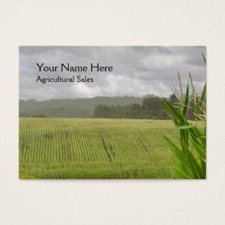 Maize plants in a farm landscape business card